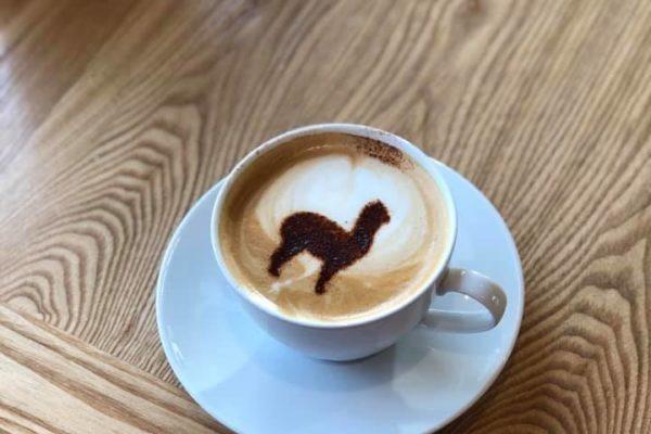 Alpaca coffee using stencil