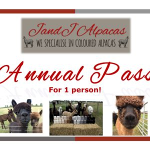 Annual Pass for 1